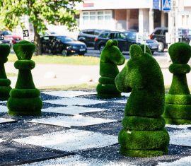 Возле Комаровского рынка установили огромные шахматы и искусственное дерево