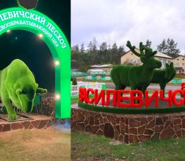 Фигуры оленей  и зубра: в Василевичах благоустроили и территорию лесхоза.