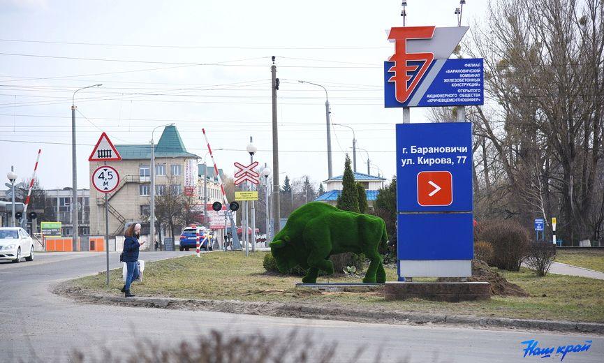 На улице Кирова в Барановичах появился красавец зубр