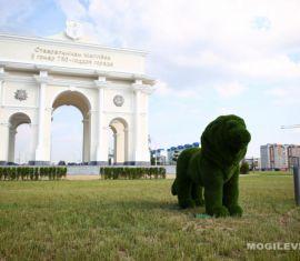 Новая скульптура льва появилась в Могилеве.