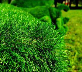 Искусственный газон и его преимущества