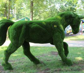 Большой зеленый конь — новый арт-объект в городском парке Бреста